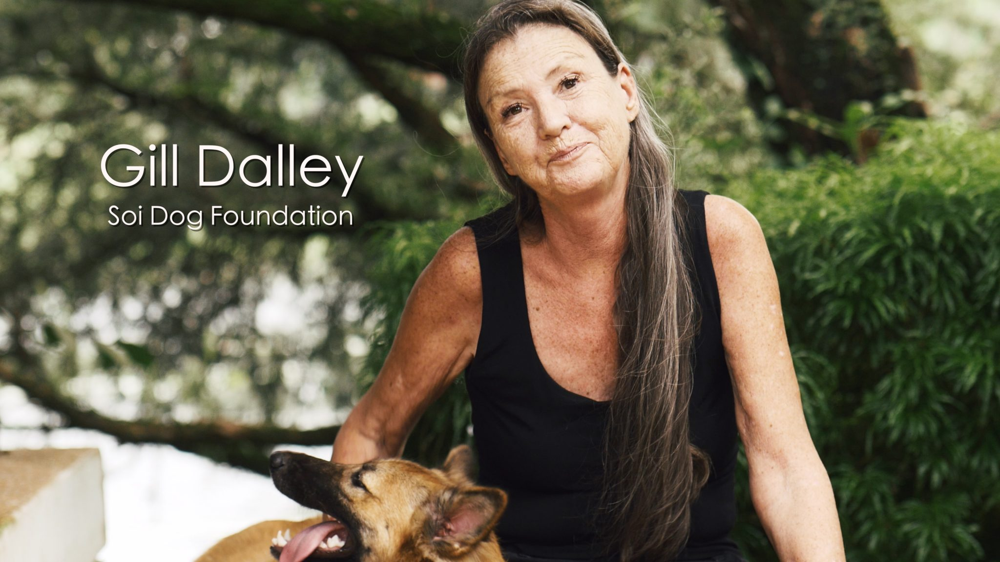 A Tribute to Gill Dalley of the Soi Dog Foundation