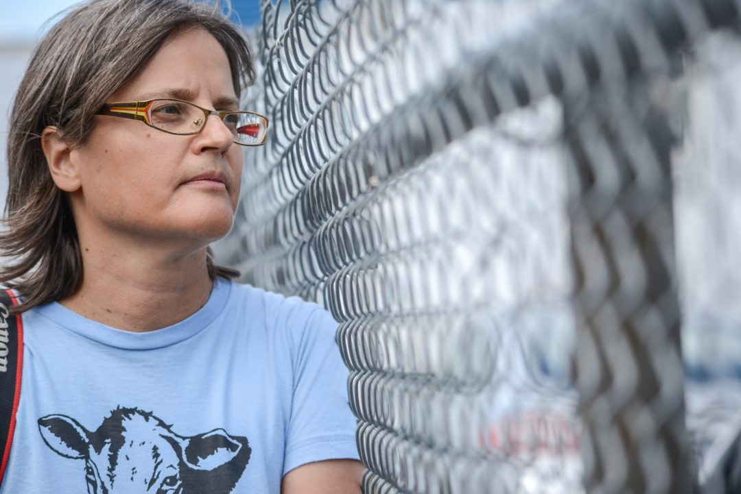 Anita Krajnc looks through the fence to animals being unloaded at the slaughterhouse. Canada, 2015.